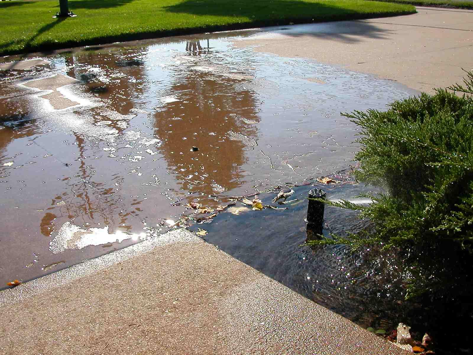 Cmg Sprinklers And Drains November 2011