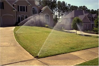 Sprinkler System a year after installation