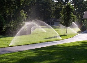 Sprinklers at work.
