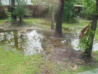 This is a good spot for a French Drain