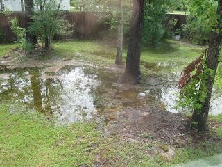 Problem Drainage Area