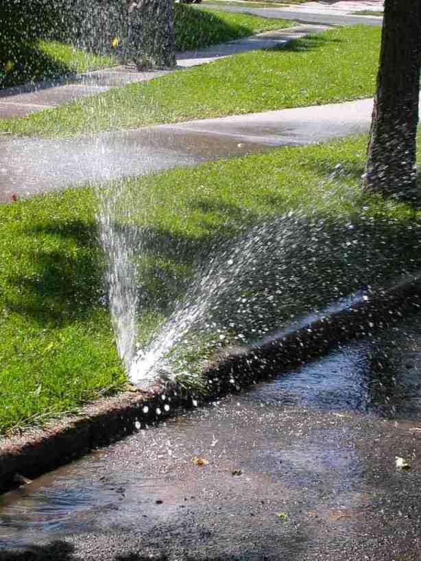 Broken Sprinkler head curb