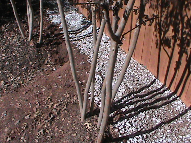 french drain near a fence